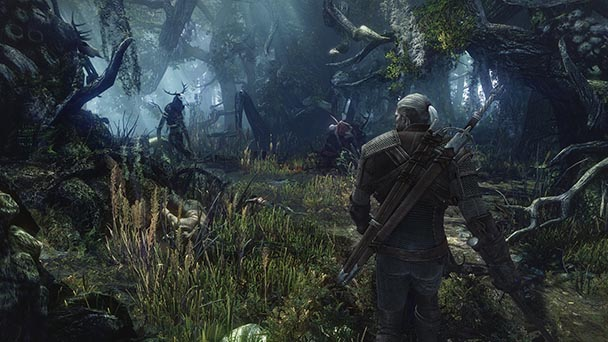 Witcher 3 Wild Hunt (4)