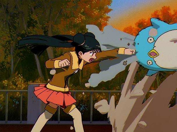 Cardcaptor Sakura (5)