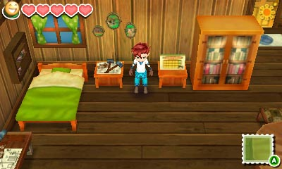 Story of Seasons (4)