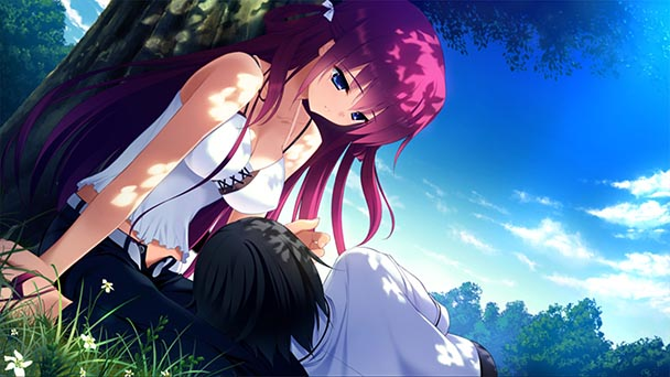 The Labyrinth of Grisaia (1)